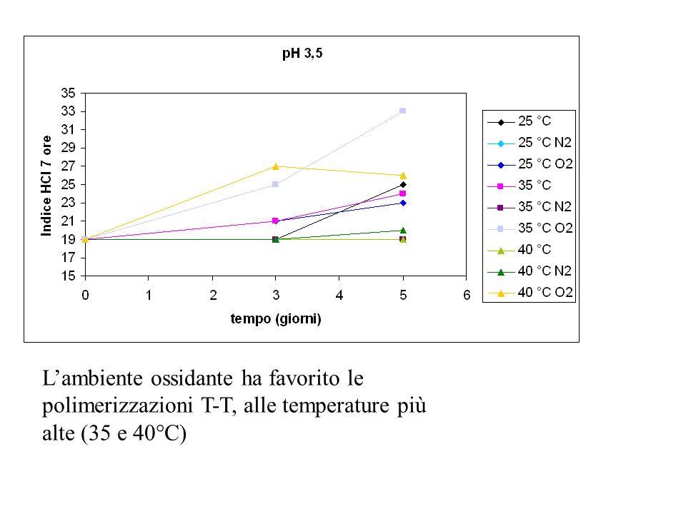 L'ambiente ossidante ha favorito le polimerizzazioni T-T, alle temperature più alte (35 e 40°C)