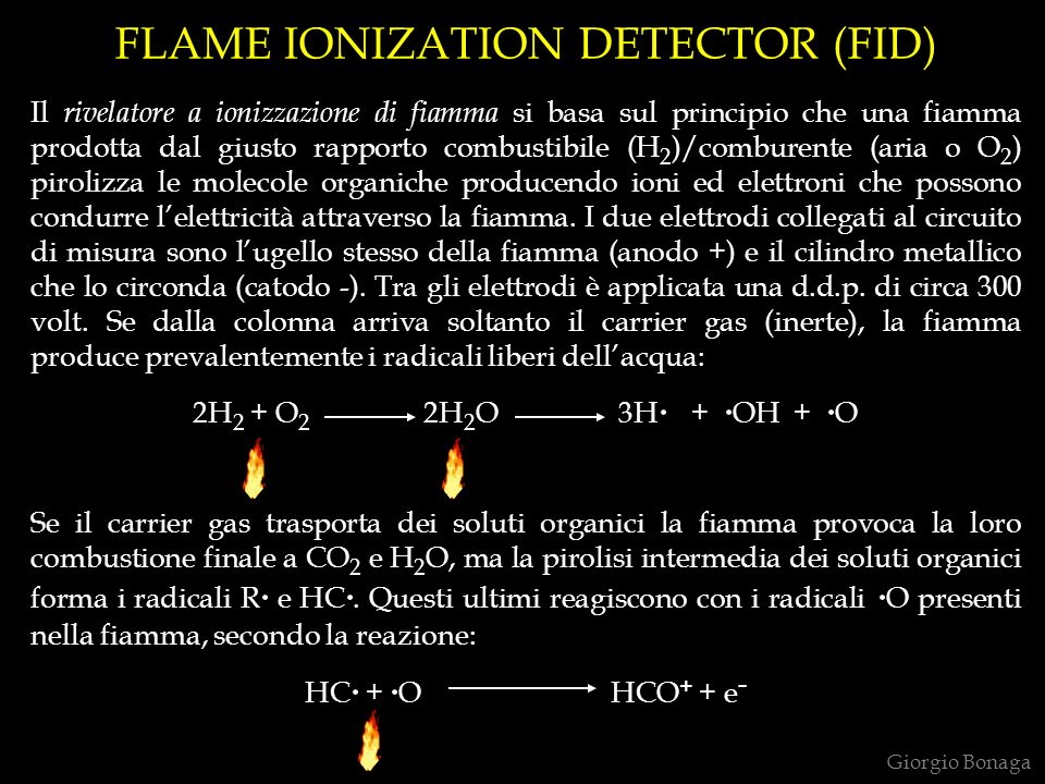FLAME IONIZATION DETECTOR (FID)