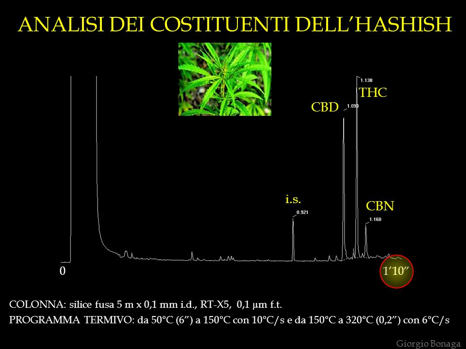 ANALISI DEI COSTITUENTI DELL'HASHISH