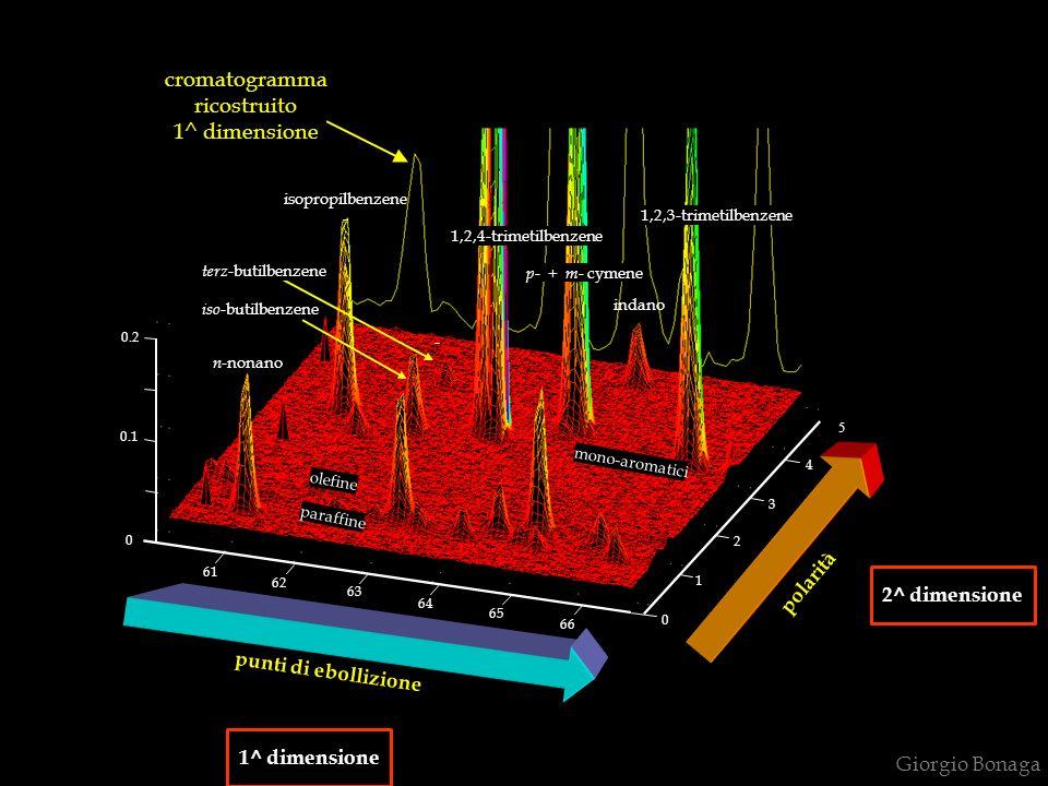cromatogramma ricostruito 1^ dimensione polarità 2^ dimensione
