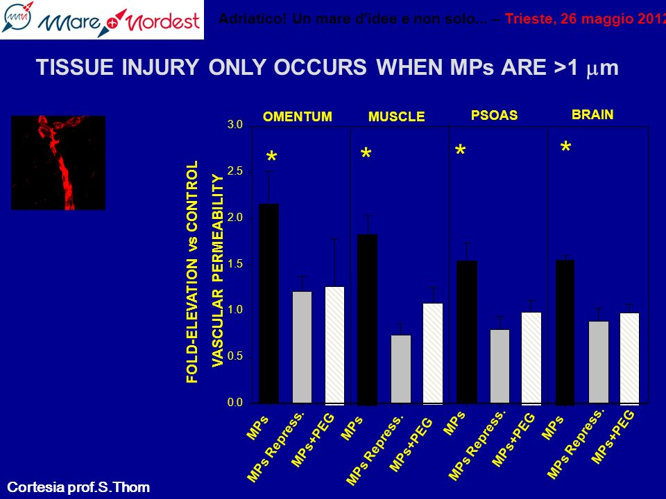 * * * * TISSUE INJURY ONLY OCCURS WHEN MPs ARE >1 m