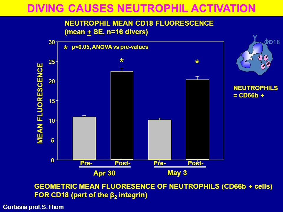 DIVING CAUSES NEUTROPHIL ACTIVATION