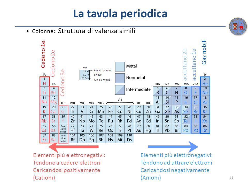La tavola periodica • Colonne: Struttura di valenza simili Cedono 1e