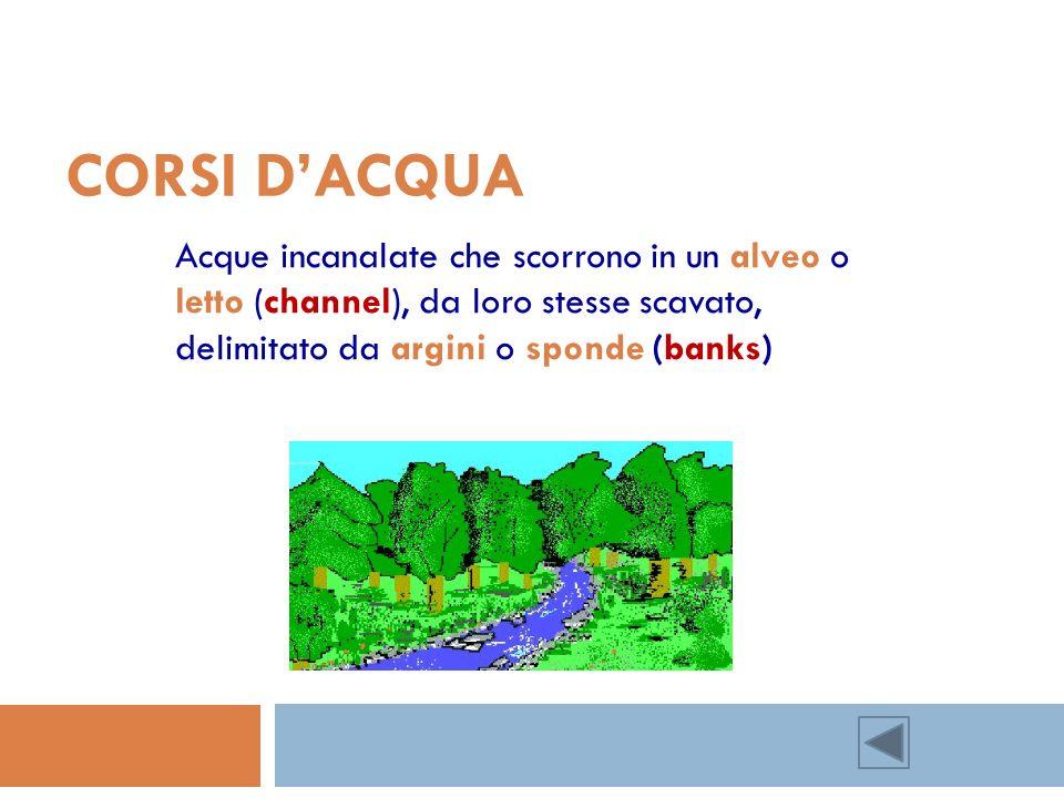 Corsi d'acqua Acque incanalate che scorrono in un alveo o letto (channel), da loro stesse scavato, delimitato da argini o sponde (banks)
