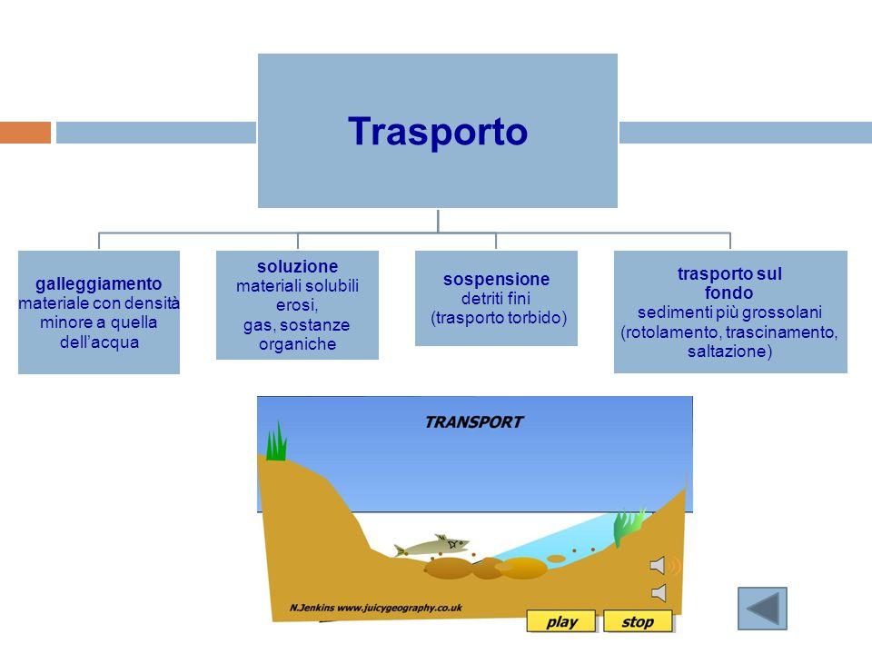 Trasporto soluzione trasporto sul galleggiamento sospensione