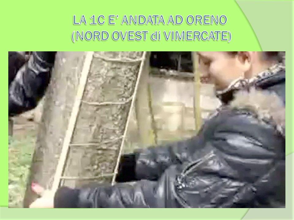 LA 1C E' ANDATA AD ORENO (NORD OVEST di VIMERCATE)