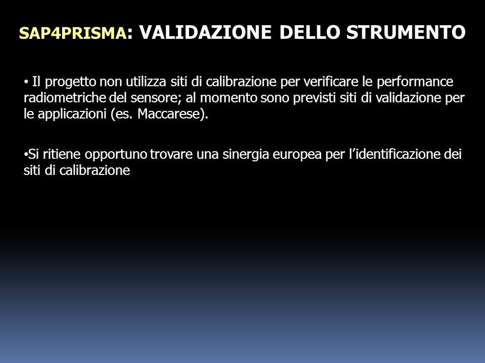 SAP4PRISMA: VALIDAZIONE DELLO STRUMENTO
