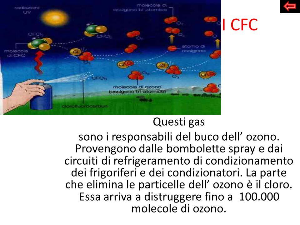 I CFC Questi gas.