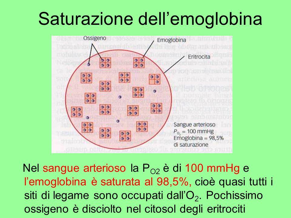 Saturazione dell'emoglobina