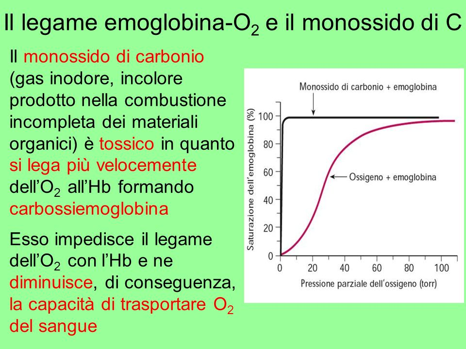 Il legame emoglobina-O2 e il monossido di C