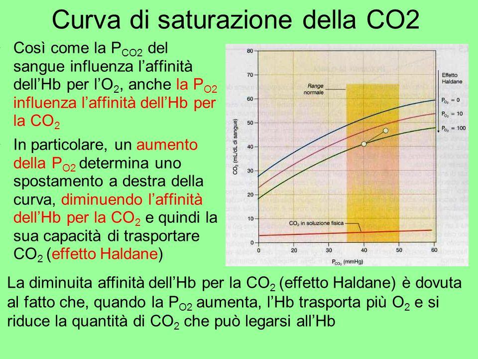Curva di saturazione della CO2