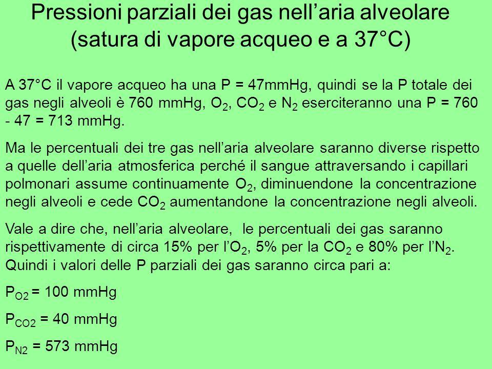 Pressioni parziali dei gas nell'aria alveolare (satura di vapore acqueo e a 37°C)