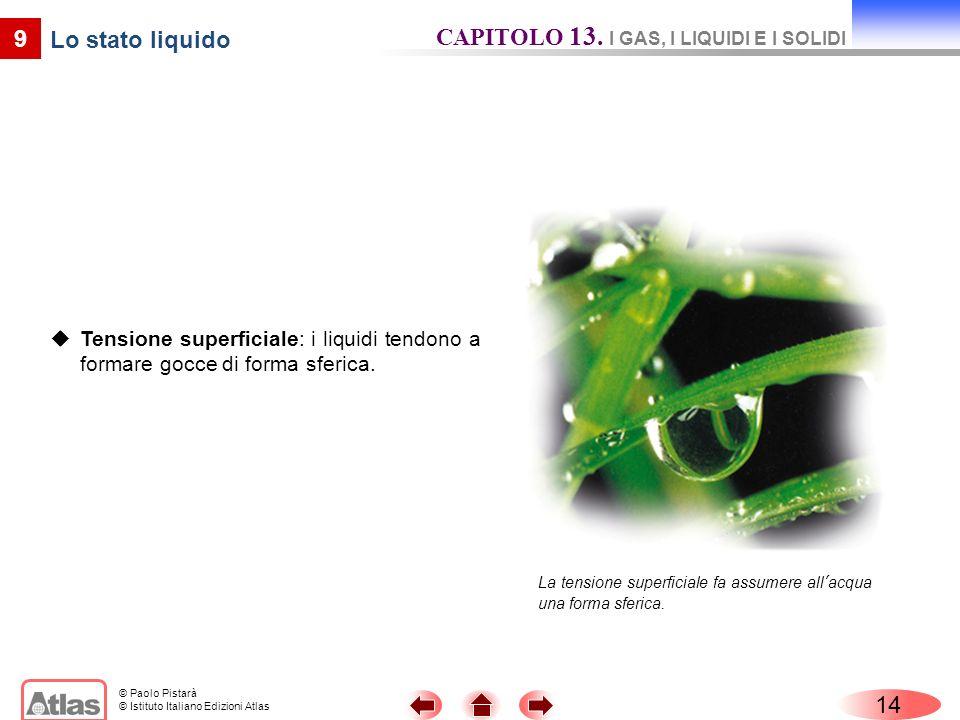 CAPITOLO 13. I GAS, I LIQUIDI E I SOLIDI Lo stato liquido