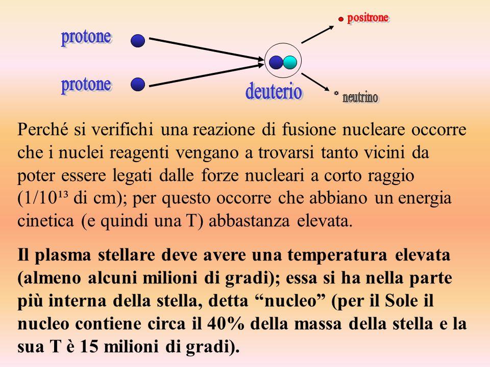 protone deuterio. positrone. neutrino.