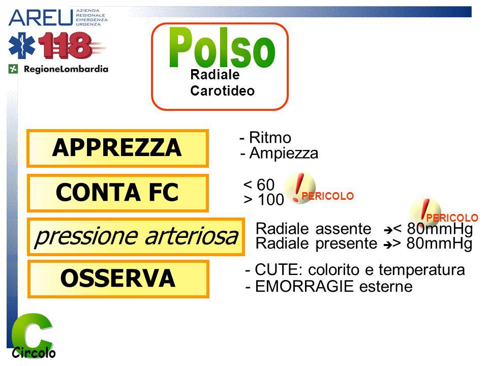 C Polso APPREZZA CONTA FC pressione arteriosa OSSERVA - Ritmo