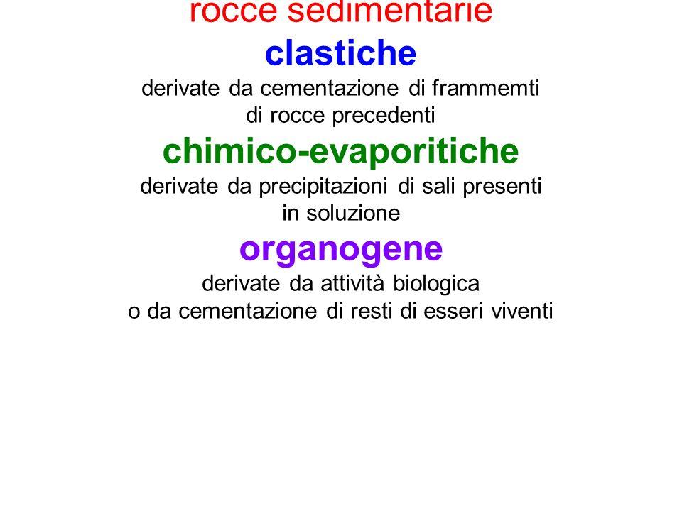 chimico-evaporitiche organogene