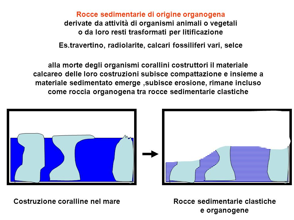 Es.travertino, radiolarite, calcari fossiliferi vari, selce