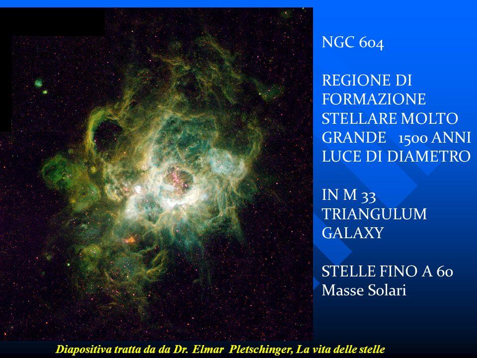 REGIONE DI FORMAZIONE STELLARE MOLTO GRANDE 1500 ANNI LUCE DI DIAMETRO