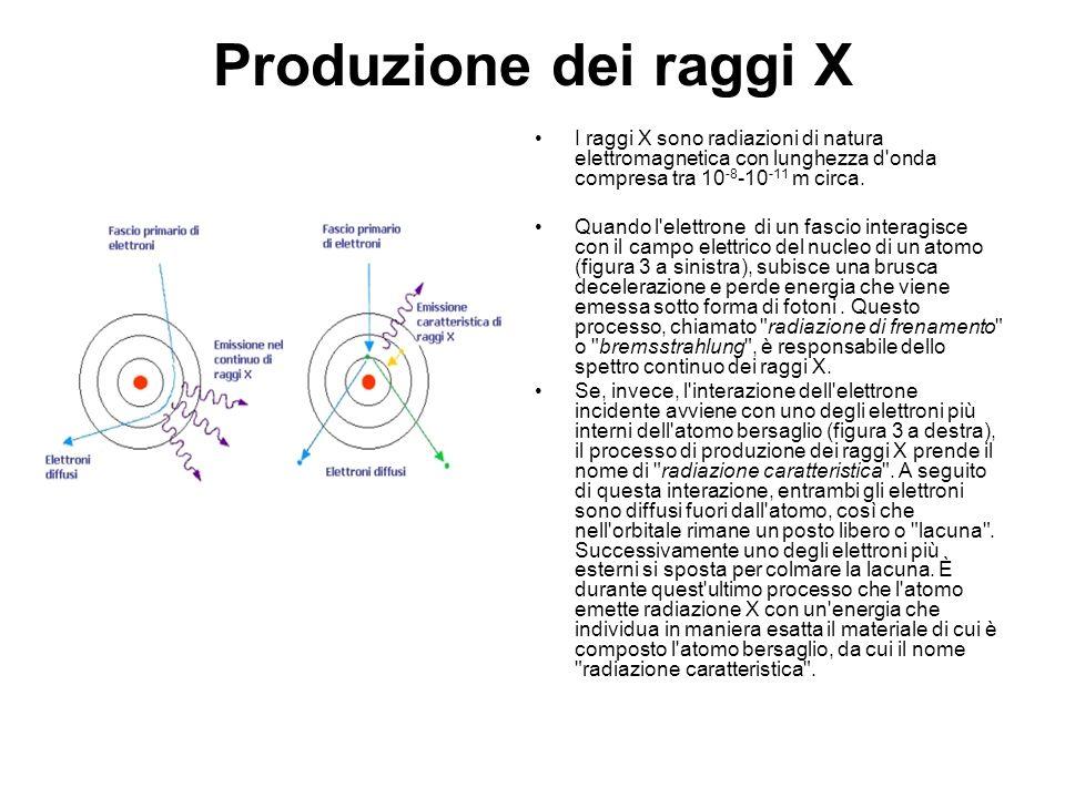 Produzione dei raggi X I raggi X sono radiazioni di natura elettromagnetica con lunghezza d onda compresa tra 10-8-10-11 m circa.