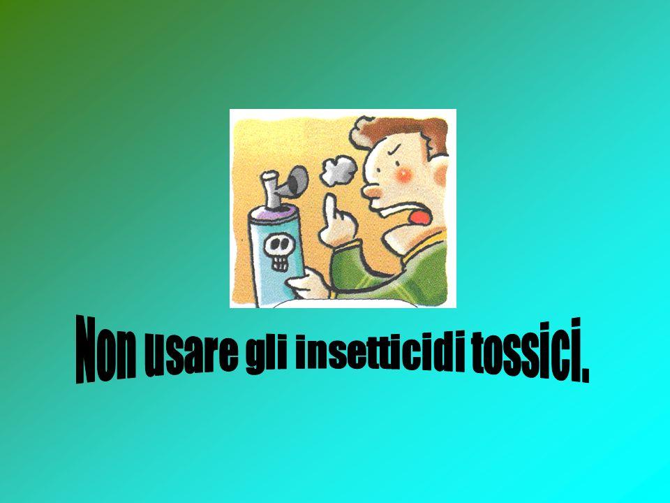 Non usare gli insetticidi tossici.