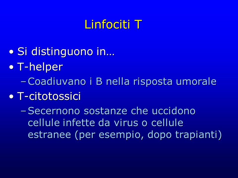 Linfociti T Si distinguono in… T-helper T-citotossici