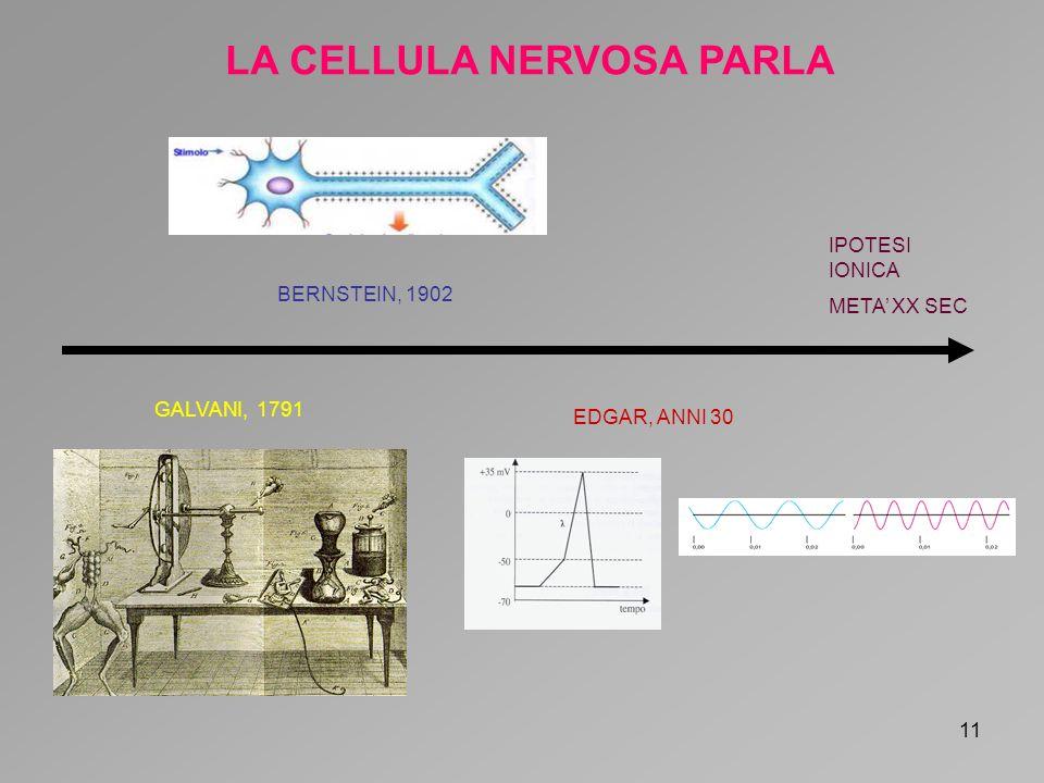 LA CELLULA NERVOSA PARLA