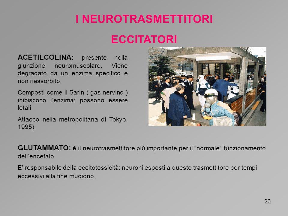 I NEUROTRASMETTITORI ECCITATORI