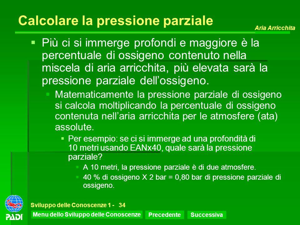 Calcolare la pressione parziale