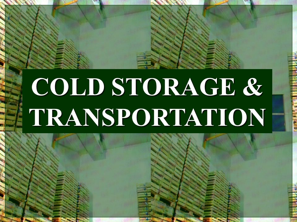 COLD STORAGE & TRANSPORTATION