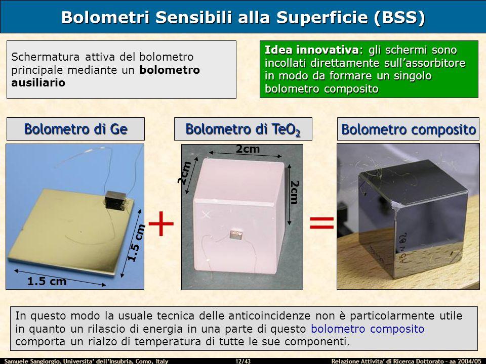 Bolometri Sensibili alla Superficie (BSS)