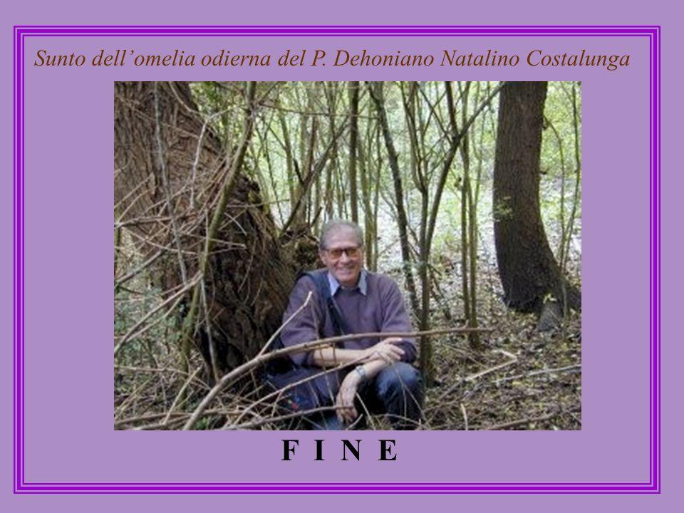 Sunto dell'omelia odierna del P. Dehoniano Natalino Costalunga