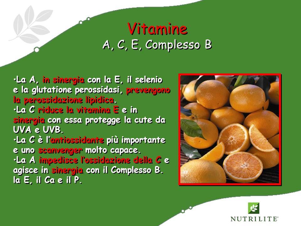 Vitamine A, C, E, Complesso B
