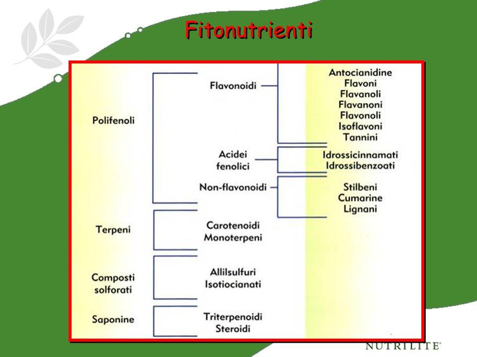 Fitonutrienti