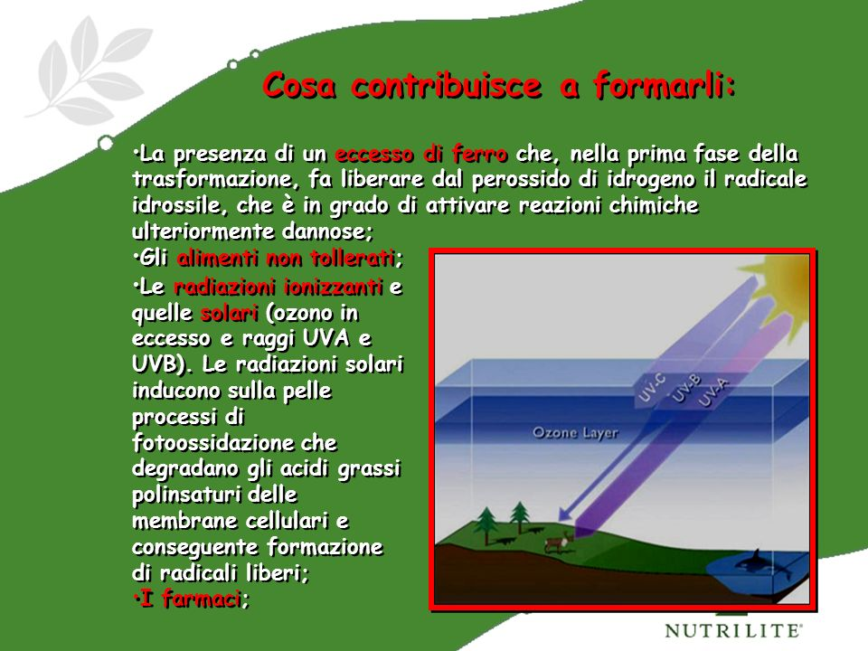 Cosa contribuisce a formarli: