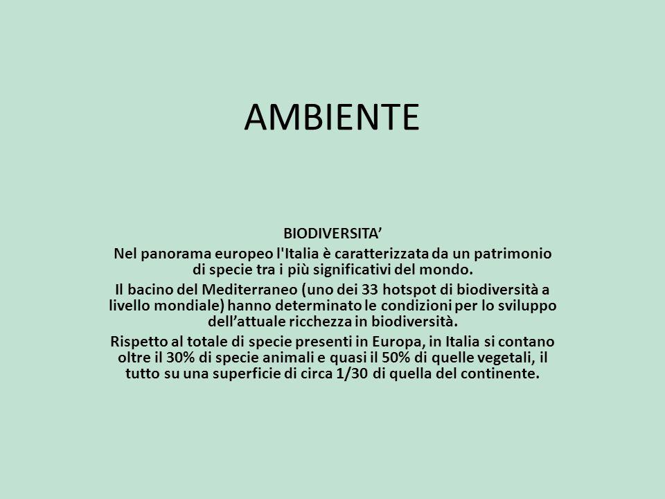 AMBIENTE BIODIVERSITA'