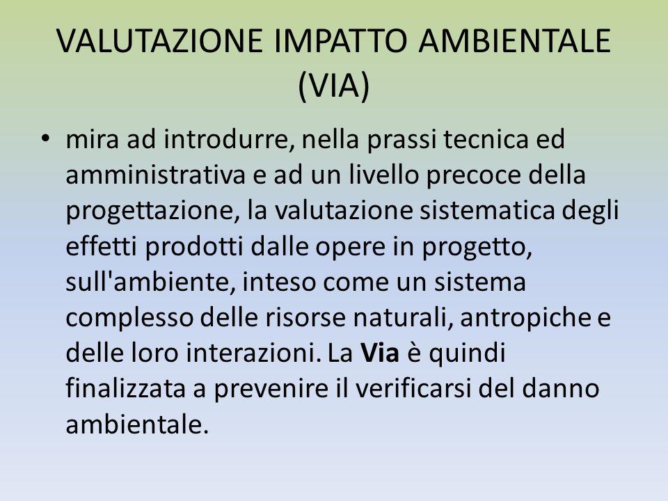 VALUTAZIONE IMPATTO AMBIENTALE (VIA)