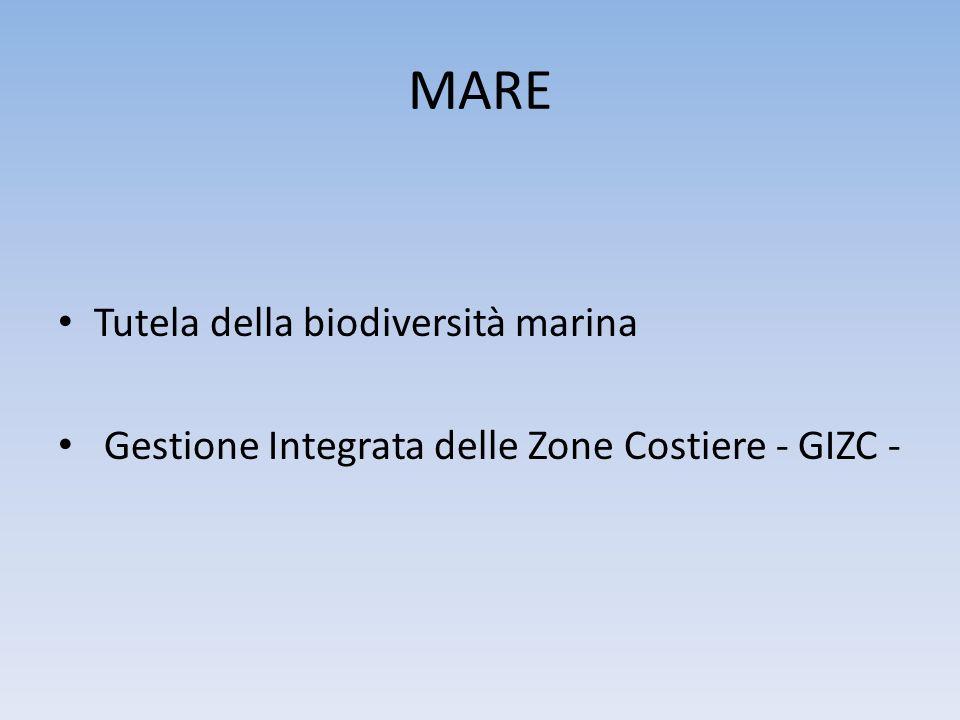 MARE Tutela della biodiversità marina