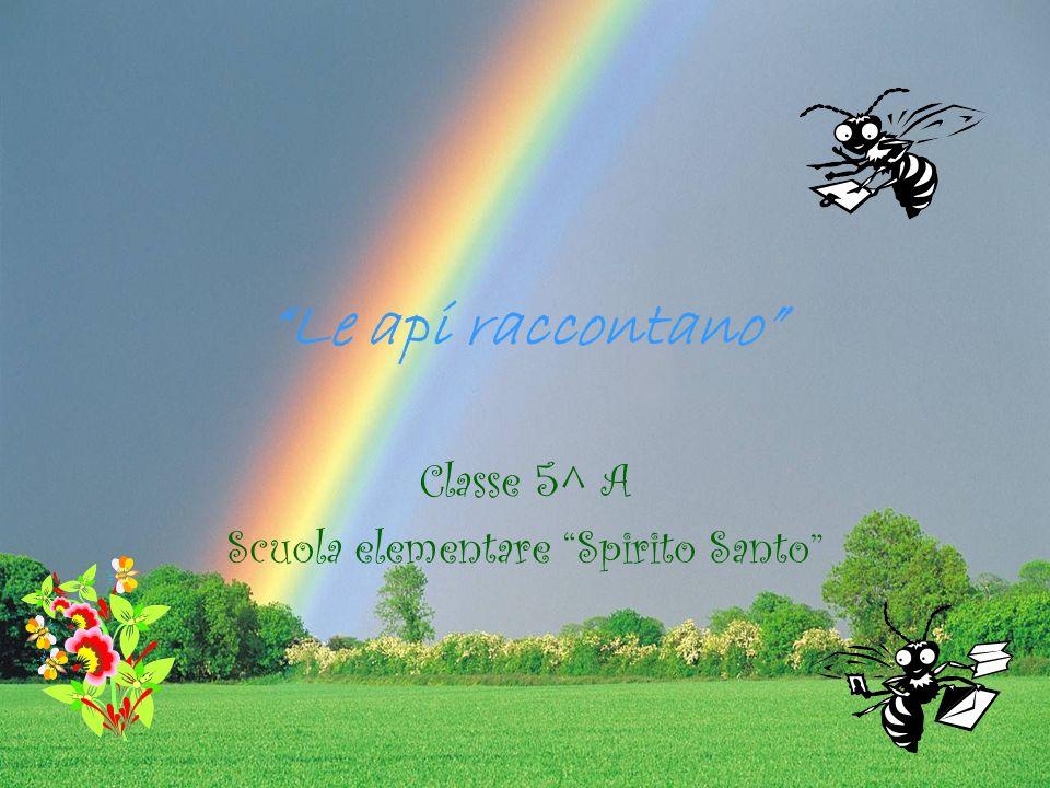 Classe 5^ A Scuola elementare Spirito Santo