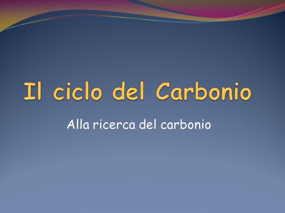 Alla ricerca del carbonio