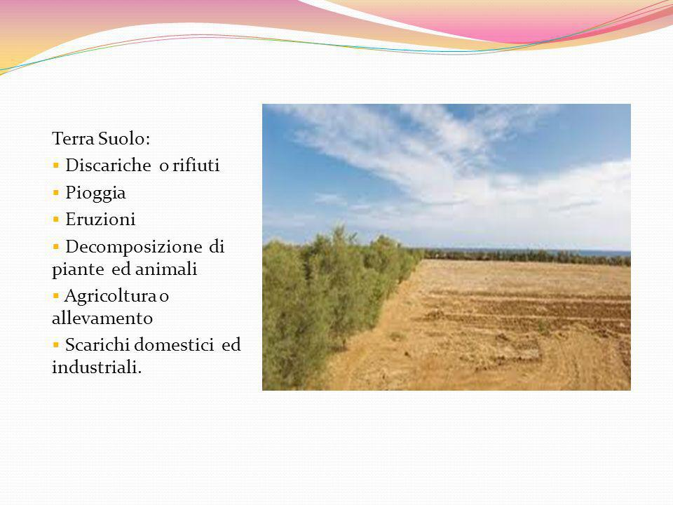 Terra Suolo: Discariche o rifiuti. Pioggia. Eruzioni. Decomposizione di piante ed animali. Agricoltura o allevamento.