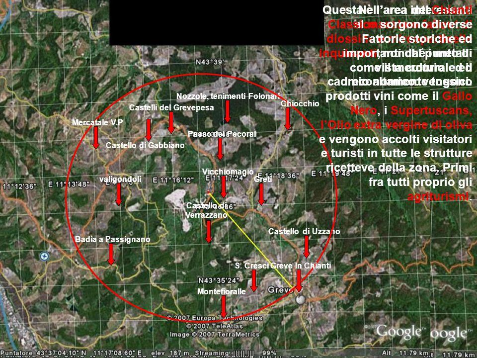Questa è l'area interessata al massimo fallout di diossine e mircoparticelle inquinanti, nonché i metalli come il mercurio ed il cadmio altamente tossici.