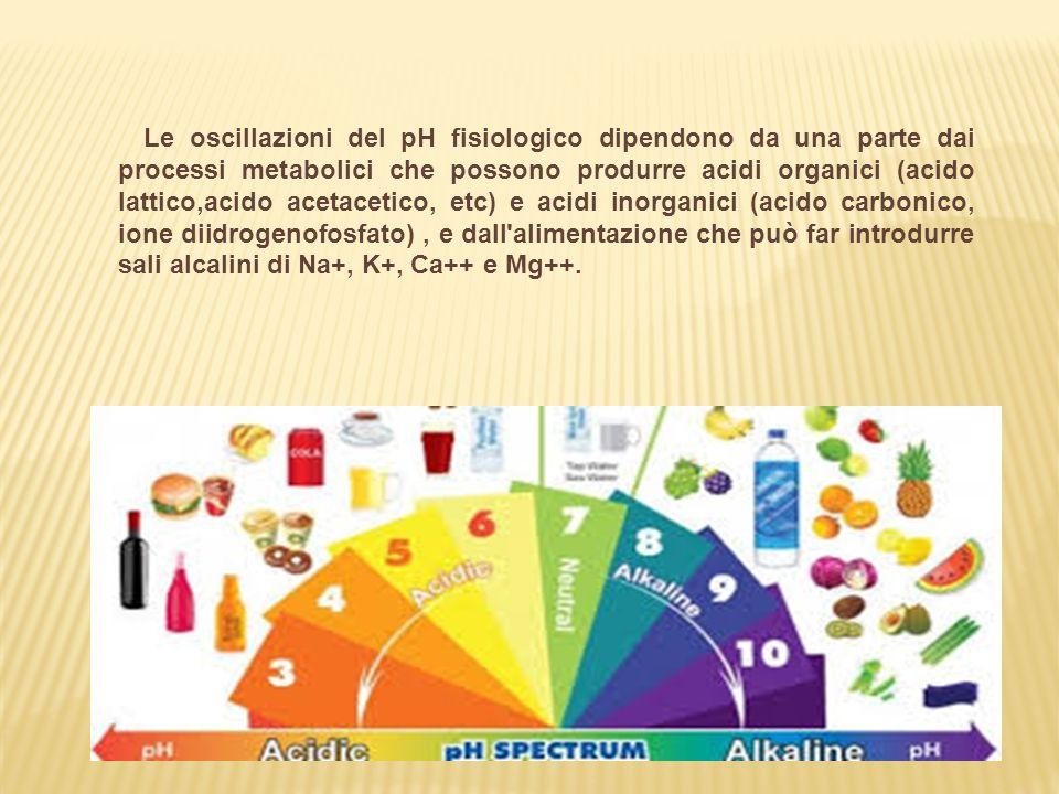 Le oscillazioni del pH fisiologico dipendono da una parte dai processi metabolici che possono produrre acidi organici (acido lattico,acido acetacetico, etc) e acidi inorganici (acido carbonico, ione diidrogenofosfato) , e dall alimentazione che può far introdurre sali alcalini di Na+, K+, Ca++ e Mg++.