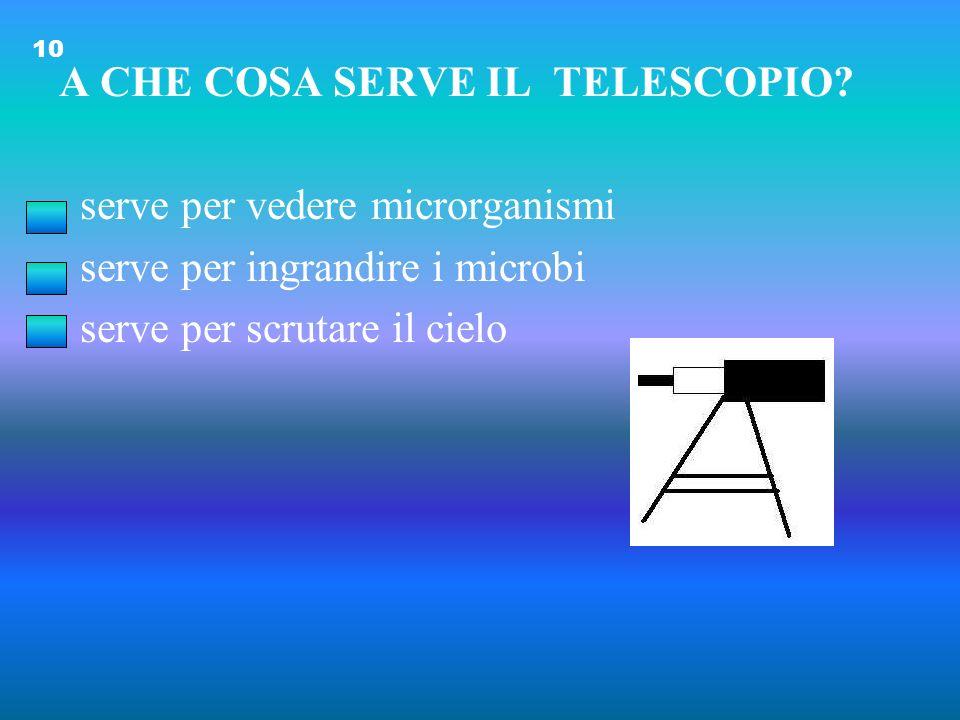 A CHE COSA SERVE IL TELESCOPIO serve per vedere microrganismi