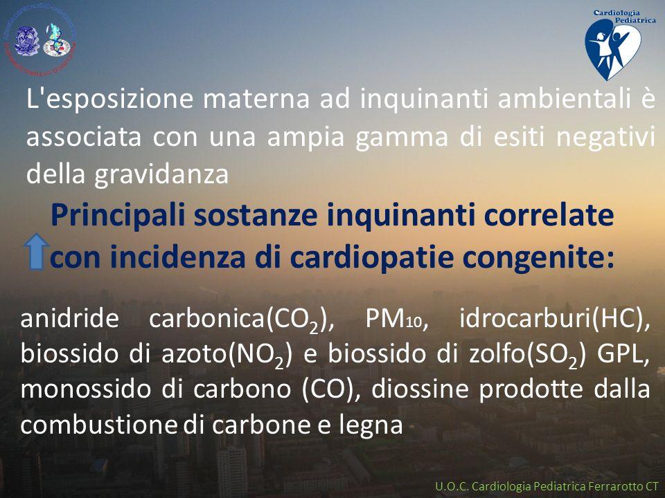 L esposizione materna ad inquinanti ambientali è associata con una ampia gamma di esiti negativi della gravidanza