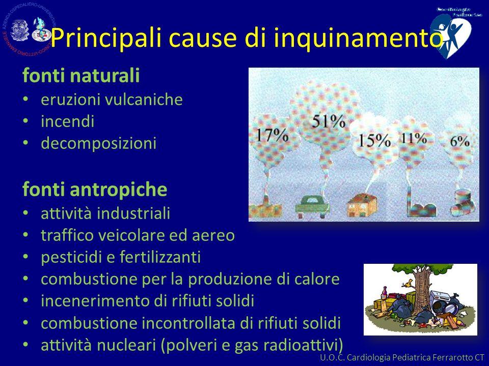 Principali cause di inquinamento