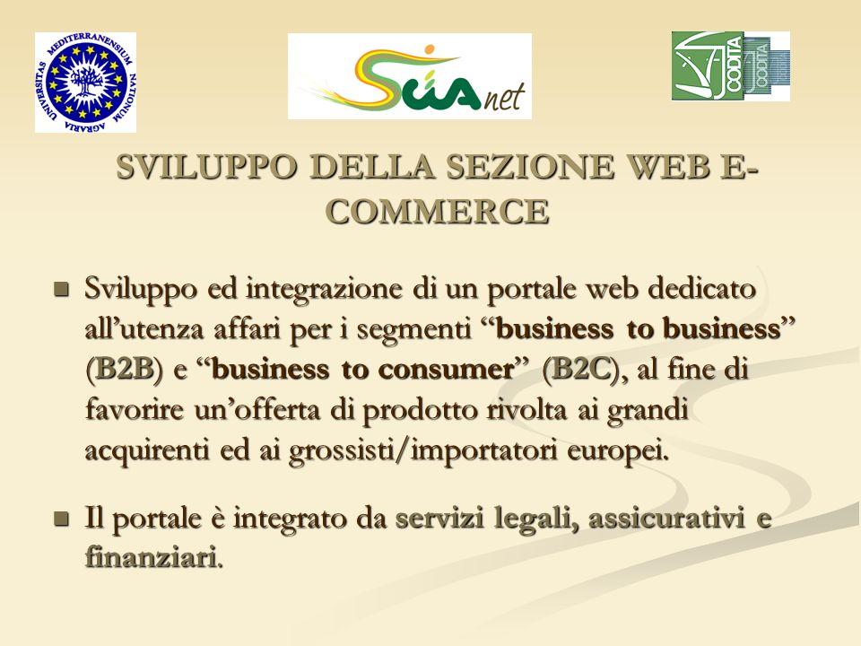 SVILUPPO DELLA SEZIONE WEB E-COMMERCE