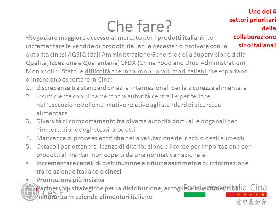 Uno dei 4 settori prioritari della collaborazione sino italiana!