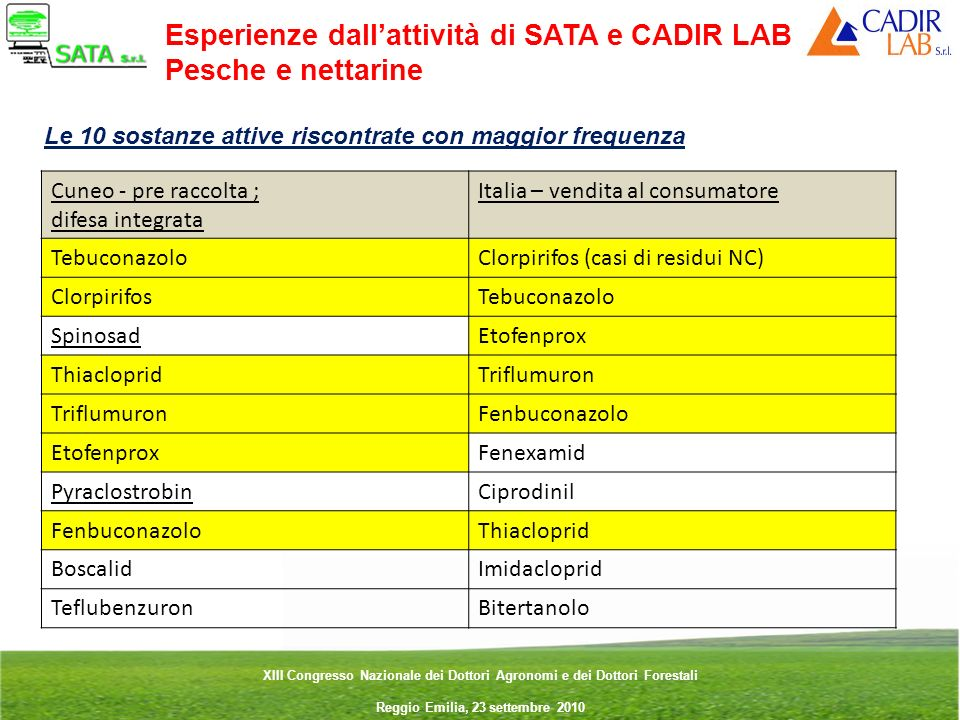 Esperienze dall'attività di SATA e CADIR LAB Pesche e nettarine