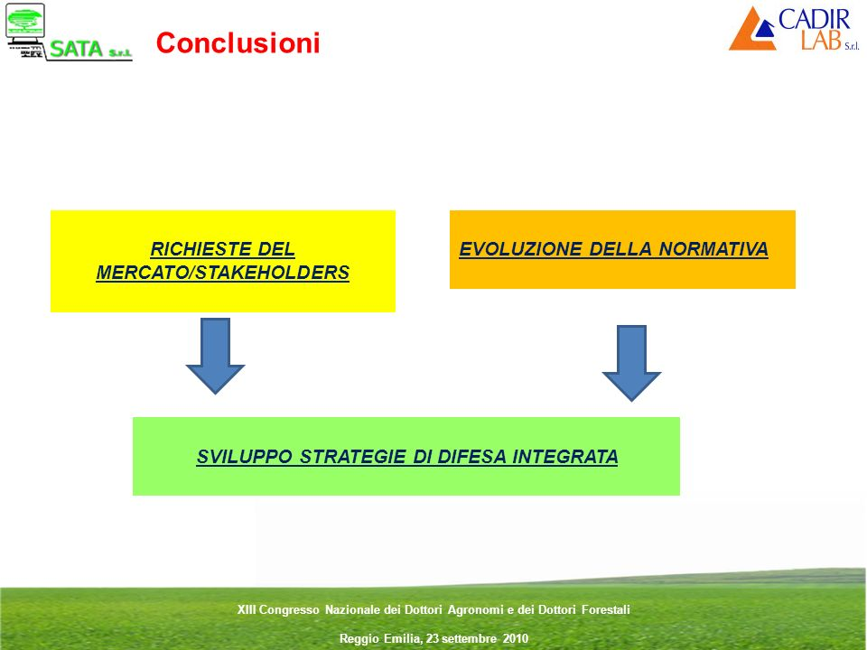 Conclusioni RICHIESTE DEL MERCATO/STAKEHOLDERS