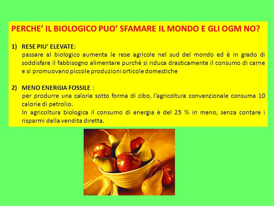 PERCHE' IL BIOLOGICO PUO' SFAMARE IL MONDO E GLI OGM NO